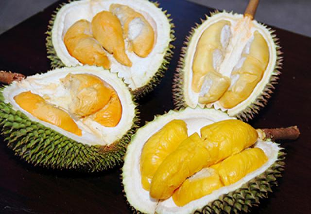 Festival durian masuk agenda wisata di Kalbar?