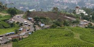 Bogor gelar festival wisata desa