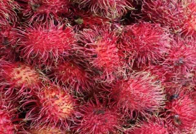 Tarik wisatawan, Sulsel perkenalkan buah lokal